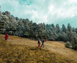 Druk path trek, bhutan